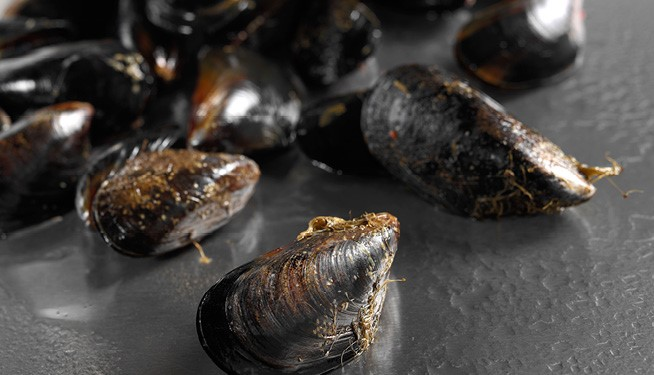 NEW! Rope Grown Ocean Mussels