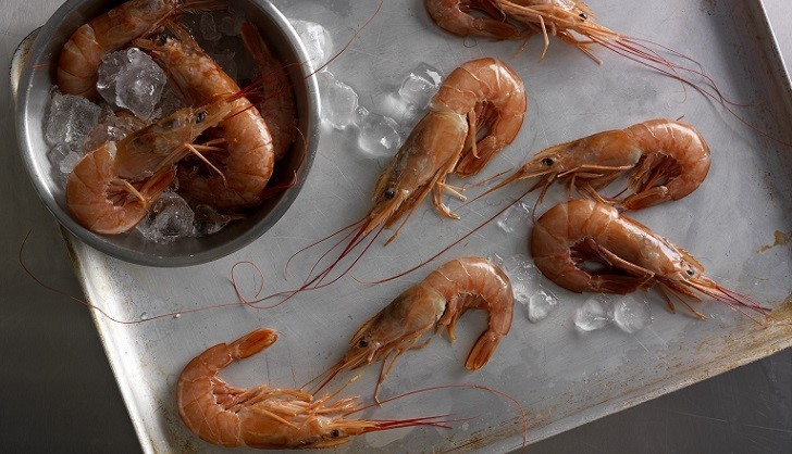 Prawns: A British Love Story